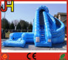 Commercial Grade Giant Inflatable Water Slide for Sale