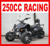 EEC 250cc Three Wheel Quad for Sale Mc-380