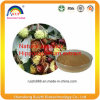 GMP Factory Supply 100% Natural Horse Chestnut Extract Escin