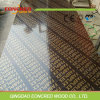 1220*2440*18mm Marine Plywood/ Film Faced Plywood