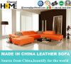 Modern Simple Genuine Leather Sofa for Home Living Room (HC1088)