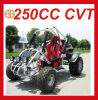 High Quality 250cc Single Seat Beach Buggy