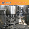 Complete Pet Bottle Pure/Mineral Water Filling Machines/Plant/Equipment