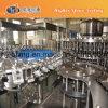 Automatic Pet Bottled Juice Filling/Bottling Machine