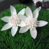 White Lotus Artificial Aroma Diffuser Sola Wood Flower (SF080)