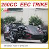 2017 New Style 250cc 3 Wheels Ztr Trike Roadster