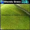 25mm Artificial Lawn with PE Monofilament Anti-UV Material