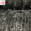 Galvanzied Construction Barbed Wire (TYH-048)
