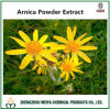 Natural Arnica Powder Extract Used for Boosting The Blood Move