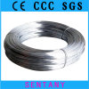 Soft Electro Galvanized Iron Wire (factory)