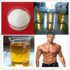 Muscle Building Injection Boldenone Undecylenate Liquid CAS: 13103-34-9