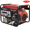 Elemax CE Approval Gasoline Generator for Factory (BVT3135)
