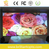 Waterproof Outdoor Full Color LED Display Screen (P16)