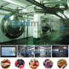 Lyophilizer for Fd Food Production Vegetable and Fruits Freeze Dryer