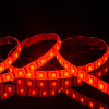 Ce& RoHS Approved Christmas LED Strip Outdoor Decoration