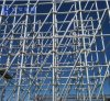 Building Materials Scaffold Ringlock System Scaffolding/Ringlock Scaffold/Ringlock ...