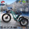 Aluminum Alloy 500W Fat Tire Electric Tricycle Hydraulic Front Fork