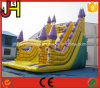 New Inflatable Slide Inflatable Huge Slide Inflatable