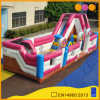Kids Inflatable Items Lollipop Inflatable Bouncer Fun City (AQ13194)