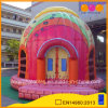New Design Inflatable Dome Castle Bouncer (AQ02369)