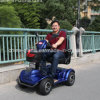 24V 1000W Brush Scooter with Ce