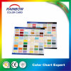 Colour Card Catalog for Professional Architecture Wall Paint
