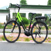 New Style 36V MTB MID Driving Electric Bicycle