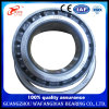Inch Manufacture Taper Roller Bearing 368/363