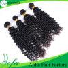 Human Hair Unprocessed Brazilian Human Hair Wig