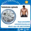 Safe&Fast Shipping Steroid Powder Testosterone Cypionate Test Cyp 200mg for Bodybuilding