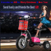 Three Wheels Electric Mobility Scooter for Gril