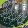 Quality Custom Pig Project Individual Stall Products