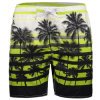 Beach Trunks Quick Dry Recreational Swimwear Shorts Coconut Tree Printing