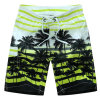 Swim Mens New Design Surf Shorts 2017 Beach Board Shorts