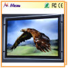 Best Price Billboard Manufacturers Advertising Mini LED Billboard