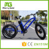 Fat Tire Electric Tricycle China E-Trike for The Elderly and The Disabled 48V 500W E Tricycle