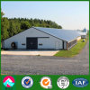 Prefabricated China Steel Structure Poultry Farms