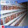 Jinfeng Chicken Cage, Battery Cages Laying Hens