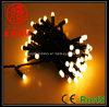 LED Blister String Light