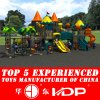 2017 Latest Large Outdoor Playground Equipment for Kids (HD14-100A)