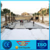 6m Width Raw Material HDPE Geomembrane for Landfill Use