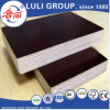 Concrete/Film Faced Plywood From China Luligroup