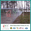 PVC Coated Privacy Square Mesh Link Chain Link Fence for Green Field Protection
