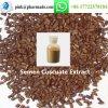 Semen Cuscuate Extract Brownish Powder Supplement