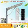 30W IP68 Waterproof Outdoor Integrated Solar LED Street Garden Light