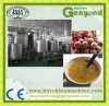Complete Automatic Passion Fruit Juice Processing Machine