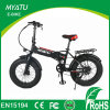 20 Inch Fat Tire Electric Hybrid Bikes/ Dirt Bike with Hidden Battery