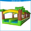 High Quality Cistomized Kid Play Water Slider
