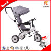 3-in-1 2017 New Model PP Plastic Children Tricycle