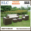 Outdoor Rattan Sofa Set /Rattan Furniture Sofa/Garden Sofa Set (SC-B9508)